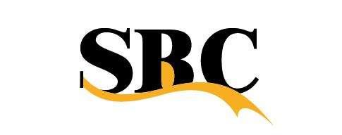 SBC滑块 Bearings